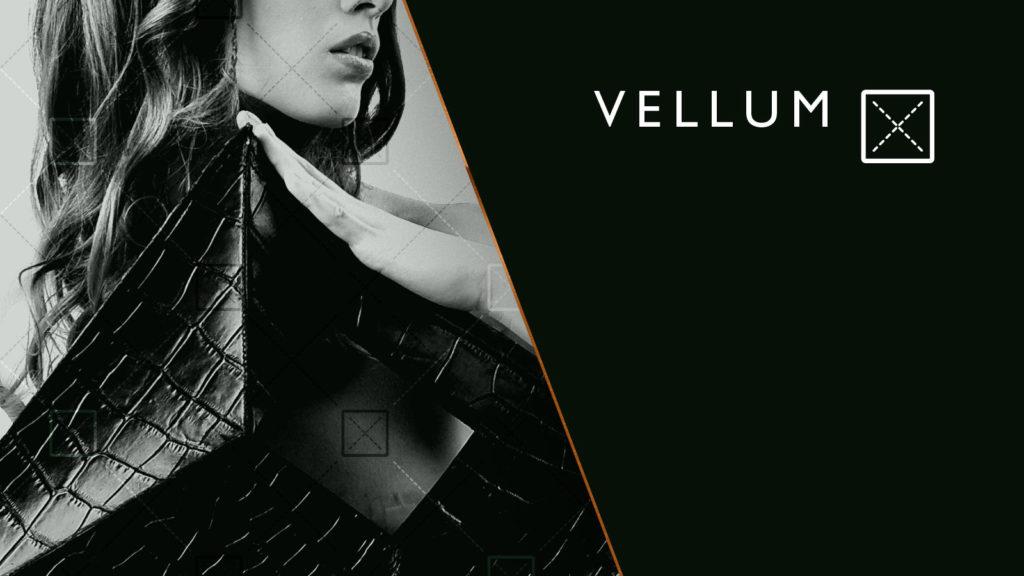 Vellum - David Stroe & Alexandra Craciun (2)